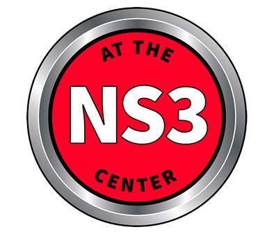 NS3 (National Settlement Services Summit)